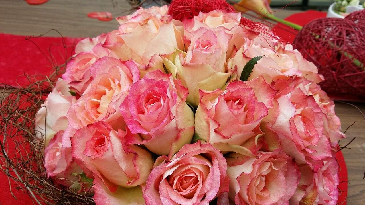 Wir wünschen alles Liebe zum Muttertag!